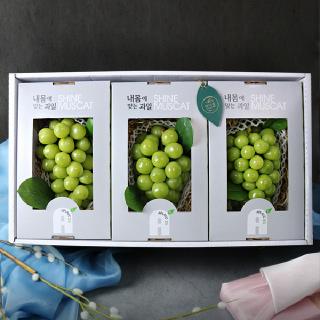 [특품]프리미엄 샤인머스켓 3kg내외 3송이(송이당 1kg내외) 선물세트 +보자기+아이스박스포장
