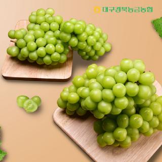 [경북능금농협]#경북 상주 샤인머스켓 1.5kg 2~3수 # 망고포도