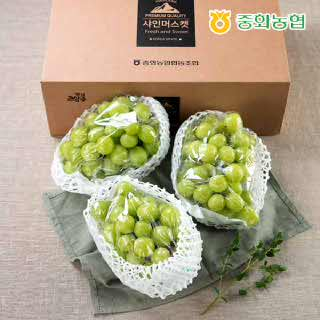 중화농협 샤인머스켓 프리미엄 선물세트 2kg 특(3~4송이),박스