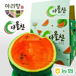충북 음성 다올찬 점보수박(9kg 이상)