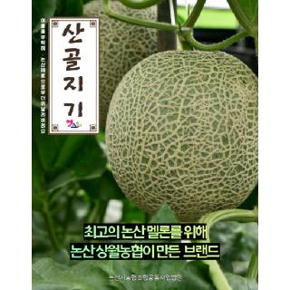 논산 상월농협 산골지기 메론 8kg(4수,5수/옵션선택)
