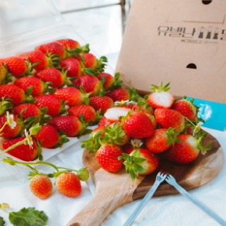 [유별난농장]제철 딸기 설향 900g / 당일수확, 선물포장 왕딸기
