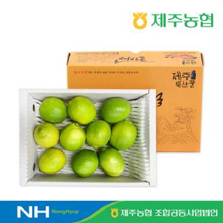 [제주농협] 귤로장생 레몬2kg(8-15입)