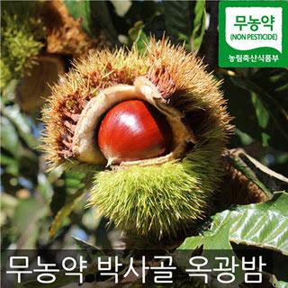 박사골 무농약 옥광밤 (대) 4kg
