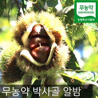 박사골 무농약 알밤 (대), 2kg