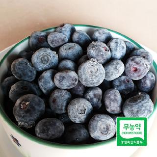 [친환경먹거리] 무농약 냉동 블루베리 2kg