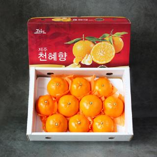 프리미엄 제주 천혜향 선물세트 3kg(9-12과)