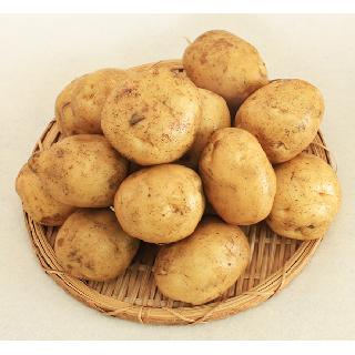 남밀양농협 햇감자 특 5kg 박스(개당중량 120~160g)