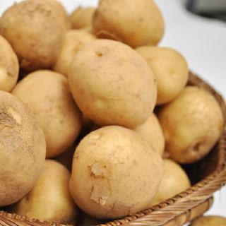 익산원예농협 감자 10kg(특/낱개중량 90-130g)
