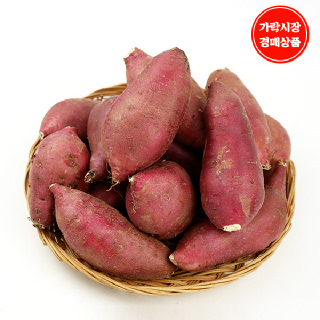 [가락시장] 꿀밤고구마 2.4kg내외/box/특상(100~250g)