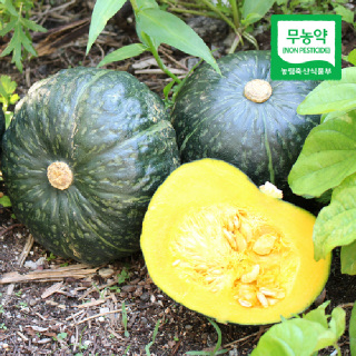 [산지직송] 함평 무농약 블랙 단호박 2kg/4kg