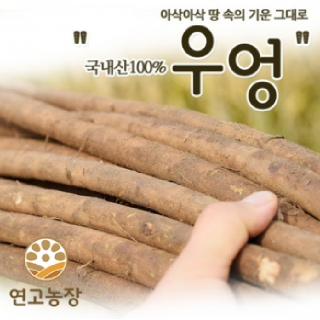 연고농장 2021년 국내산 햇우엉(반찬용,우엉차용)