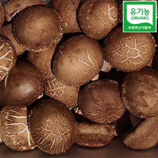[괴산장터][농장직송] 유기농 생표고버섯 1KG(가정용)