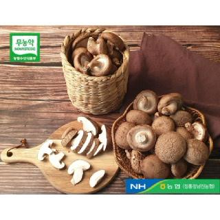 정남진장흥농협 장흥 생표고버섯