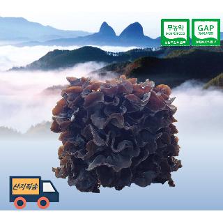 진안고원에서 기른 국산 무농약 목이버섯