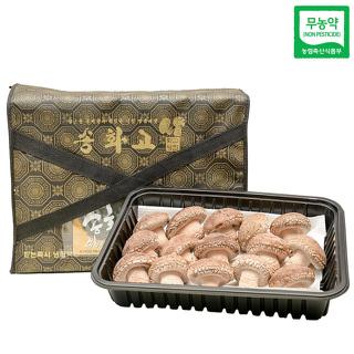 무농약 송이향 송화고 버섯 선물세트3호