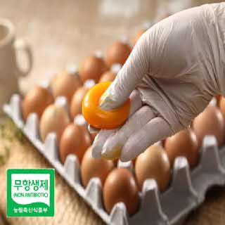 유황사료로 키운 제암농장 무항생제 유정란 30구/계란