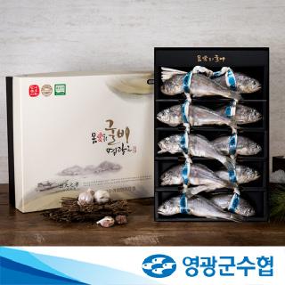 영광군수협 법성포 영광 오가 굴비 명품 1호(1.4kg/10미+부직포가방 포장)