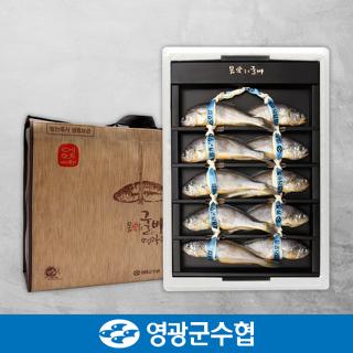 영광군수협 법성포 영광 굴비 실속 오가 선물세트 900g(10미) / 부직포가방 포장