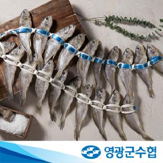 영광군수협 법성포 영광 굴비 장대 3호 1.4kg