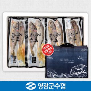 영광군수협 법성포 영광 진공 굴비 세트 2.1kg(30미) / 700g*3팩