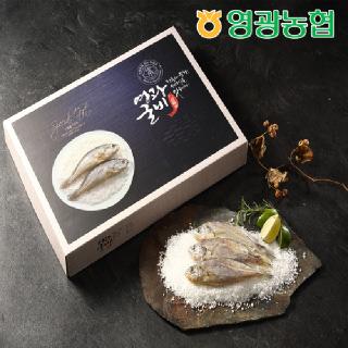 영광농협 영광굴비 오가세트 3호(1.3kg/10마리/21-22cm)