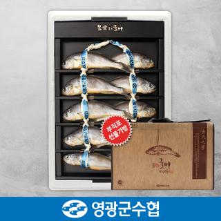 영광군수협 법성포 영광 굴비 오가 선물세트 1.1kg(10미) / 부직포가방 포장