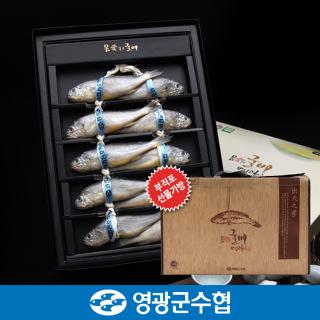 영광군수협 법성포 영광 굴비 명품 오가 선물세트 1.6kg(10미) / 고급지함, 부직포가방 포장
