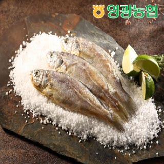 영광농협 영광굴비 오가세트 2호(1.2kg/10마리/20-21cm)