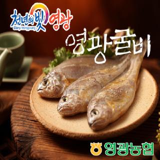 영광농협 영광굴비 장줄세트 8호(1.98kg/20미/17-19cm)
