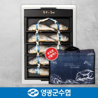 영광군수협 법성포 영광 굴비 오가 선물세트 1.2kg(10미) / 농협 부직포가방 포장