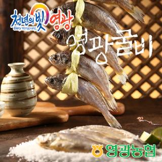 영광농협 영광굴비 장줄세트 6호(1.6kg/20미/14-16cm)