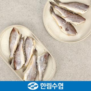 제주 한림수협 제주 두절 참 조기 1kg