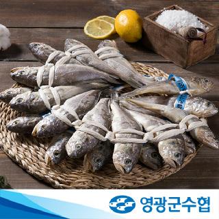 영광군수협 법성포 영광굴비 장대 6호 1.7kg