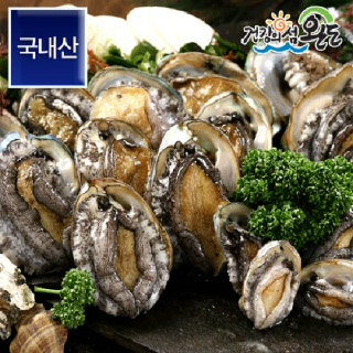 [청정바다엔] 완도전복 1.4kg /26마리(중) (완도직송,산소포장)