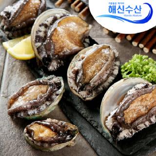 해신수산 완도활전복 삼계탕용 25~28마리 1kg(2~3인용)