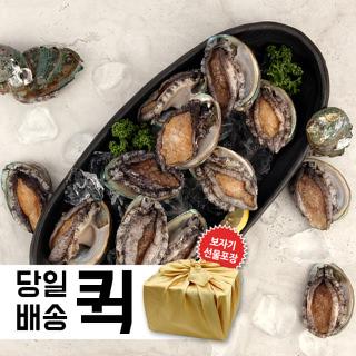 [서울/수도권 안심퀵배송] 완도 活전복세트 특대 1kg (9~10미)+보자기포장