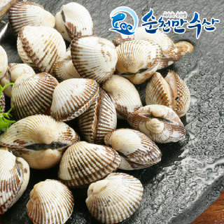 순천만수산 벌교 새꼬막(특품) 1.5kg