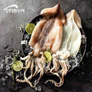 국내산 손질 오징어 800g (3-6미)