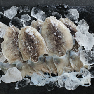 육질이 살아있는 국내산 손질 갑오징어 300g x 3마리