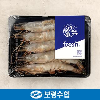 보령수협 국내산 대하 400g(5미)