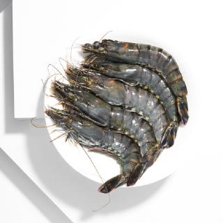 [삼삼해물] 거제도 급랭 왕새우 300g