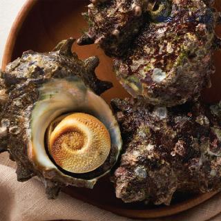 삼삼해물 거제도에서 갓 채취한 자연산 뿔소라 1kg (4~6마리)