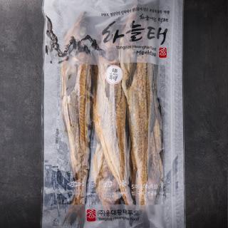 [하늘태]용대리먹태 8통(특대)5미 43-46cm