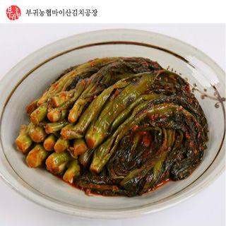 부귀농협 마이산 갓김치 3kg