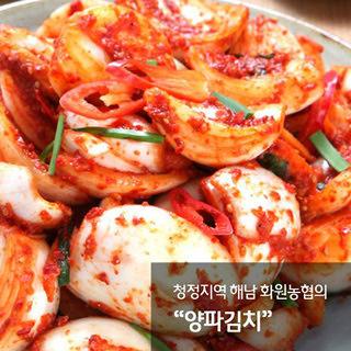해남화원농협 이맑은 양파김치 3kg