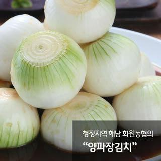 해남화원농협 이맑은 양파장김치 3kg