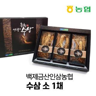 [백제금산인삼농협]수삼 소편(750g) 12뿌리 이상 [추석특가]