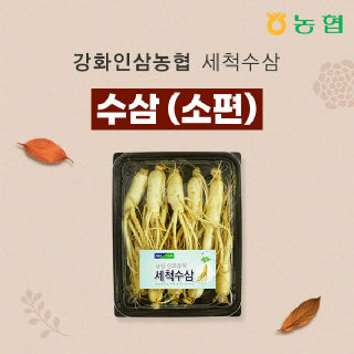 강화인삼농협 세척수삼 소편 500g / 9~10뿌리