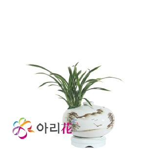 대국 백자주판(대)0163